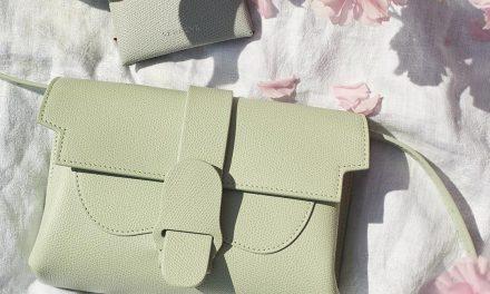 SENREVE –A Bag That Does More