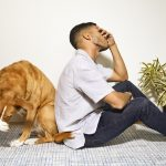 Dutch – Access High-Quality Pet Care on Your Terms